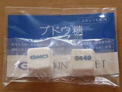GMOインターネット 株主総会お土産のブドウ糖